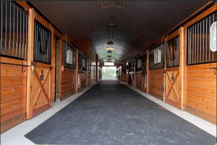 horse riding lessons frederick md 21701